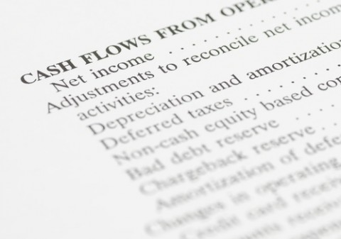 Net Worth / Cash Flow